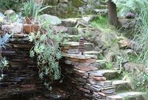 Garden ( puutarha )