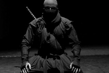 Ninja/Samurai  / by Leo Ortiz
