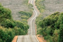 Roads least Travelled