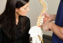 Chiropractic Care / Chiropractic care is a complete system of healthcare focused on restoring, preserving, and optimizing health by natural hands-on care.