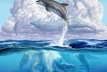 δελφινια