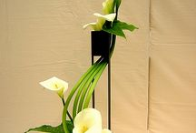 arrangements floral / by Betsy Thomson