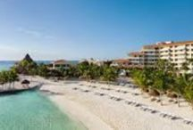 Places to Go / Why Not travel?  Puerto Aventuras!