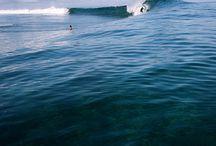 Surf sun / Ocean