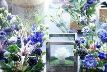 &LISIANTHUS / Een mooie bloem met een mooie naam, dat is de lisianthus. Haar sympathieke symboliek van onder andere dankbaarheid maakt haar hét perfecte cadeau.