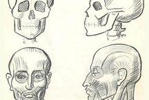 Sketches & Concept Art