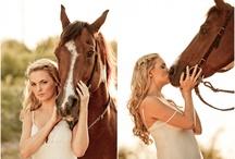 Paarden. / by Dedelaetjes Helmig