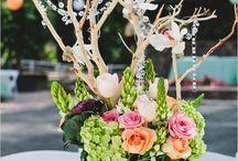 Rustic outdoor wedding / by Creative Elegance Weddings