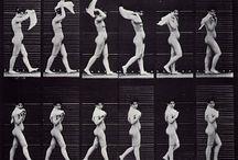 Anatomy/Animation