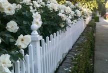 Ogrodzenia, Płoty