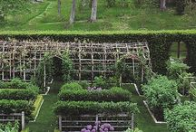 Kitchen gardens / by Kathryn M Ireland