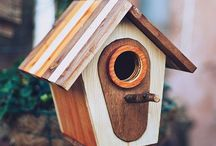 Birdhouses and Nestboxes / Boxes of all types for little animals in the garden