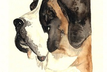 Shopper's Paradise  / by Whitney Terry
