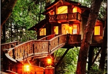 Living on Top / This board is about living in tree houses!