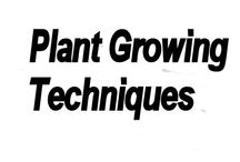 Plant Growing Techniques /  Techniques for growing plant