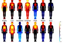Термография эмоций