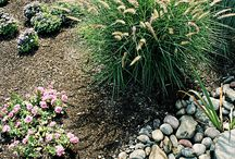 Landscapes / Front yard, back yard, big yard, small yard. Enjoy them all! Plus improve your curb appeal with the right plantings and décor.