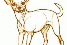 Chihuahua drawing tutorials