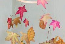 кленоаые листьч