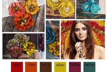 Earthy Colour Schemes