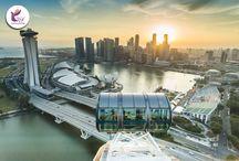 فلایر سنگاپور برای کسانی که هیجان و تفریح را دوست دارند