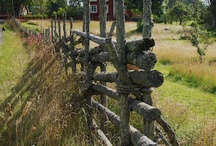 Fences, don't fence me in! / by Karen Sweitzer