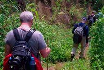 Trekking travel Vietnam / 0