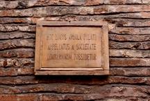 Foto: Bologna, where I've falled in love / Le foto della mia Bologna, dove ho vissuto per 6 anni