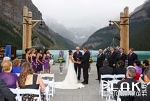 Dream Wedding / by Kathryn Barnette