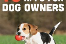 Dog Owners - How to