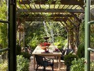 DIY Yard 'n Garden / by Mary Hull