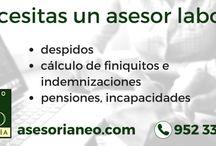 Servicios Asesoría Neo / Servicios ofrecidos por Asesoría Neo