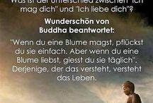 Weisheiten