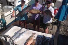 Deep Sea fishing / Fish we catch on charters in the Gulf of Mexico