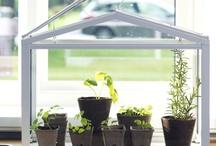Уроци по градинарство