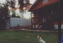 Мой любимый дом
