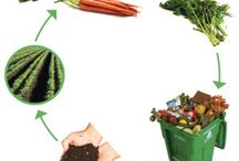 Composting / Ideas on composting and different ways of doing so!