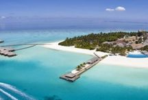Top ten insule exotice