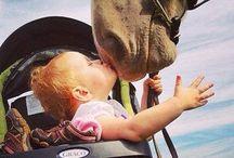 kiss horse