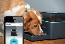 Petables / Wearables, tech, toys and accessories for your pets