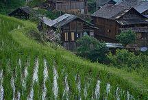 중국 풍경