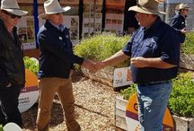 PG | Events & Field Days
