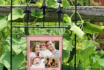 Garden / Personalize your home or community garden