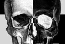 Tatoo cranii