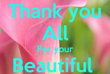 PINNERS AND FOLLOWERS / Thank You All