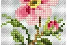 Küçük çiçekler