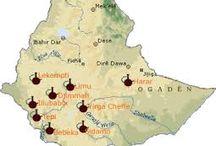 Ethiopia Sidamo Gr2 washed / Milovníci kávy oceňují její zvláštnost a ušlechtilost. Plně praná, nad.výška 1600-1900 m n.m., sušená na slunci na postelích, sběr listopad-prosinec. Naše Sidamo  Gr2 (co značí vysokou  kvalita zrna ) je vynikající, znalci oceňována káva se sametovým tělem a špetkou koření. Má velmi příjemnou nižší střední ovocnou aciditu s dochutí do karamelu, medu a ovocných tónů.