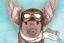 Flying Pigs / Pictures of flying pigs.