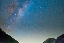 • NEW ZEALAND •