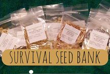 survival seeds / by Hometown Seeds